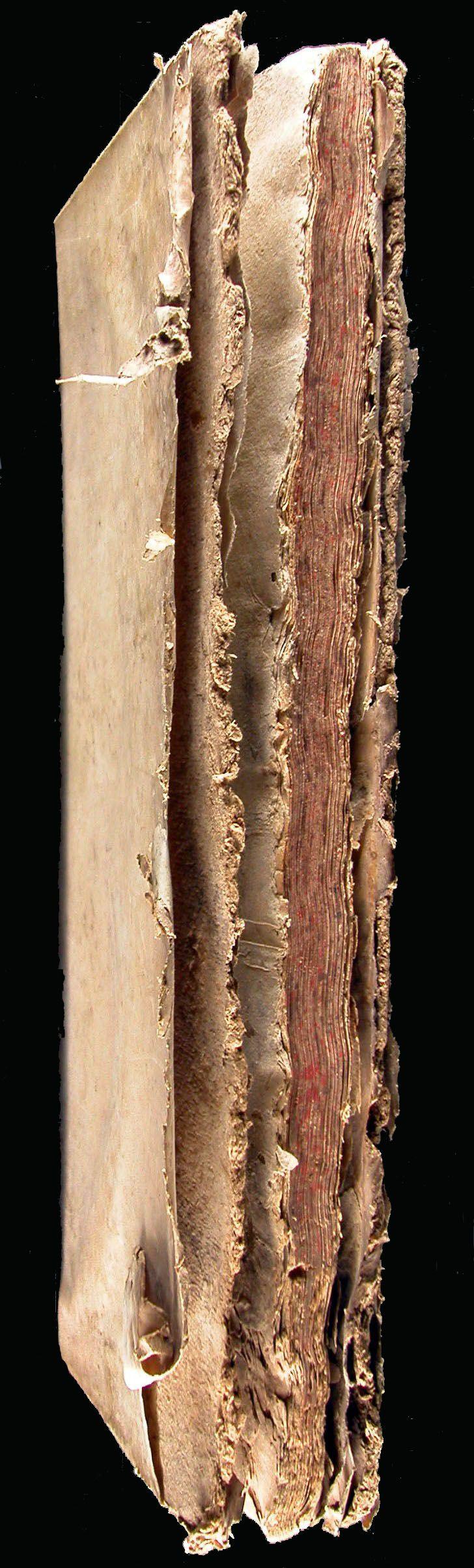 Proposta de restauració:  Bloc del llibre i gravats, aplicació de reserva alcalina i reintegracions puntuals.  Neteja i reintegració de l'enquadernació en pergamí