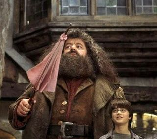 Image result for hagrid meets harry