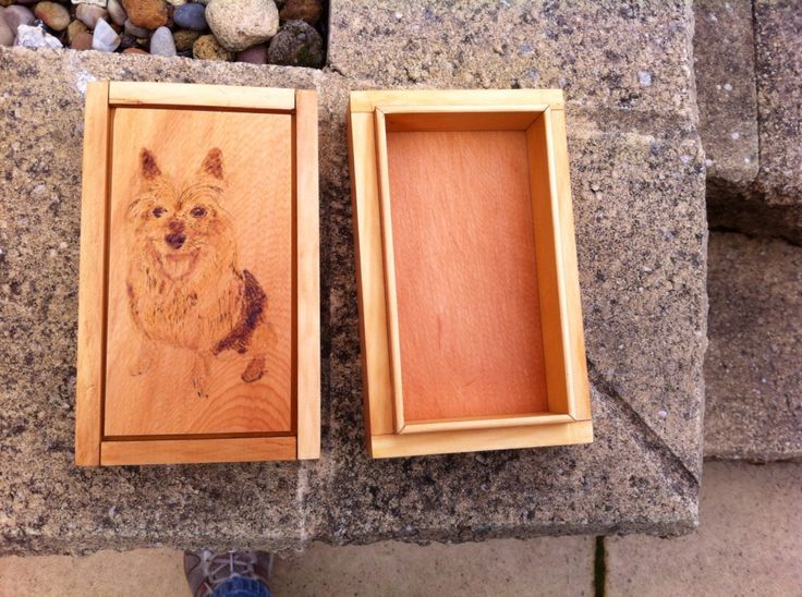 Split box for ashes of a dog