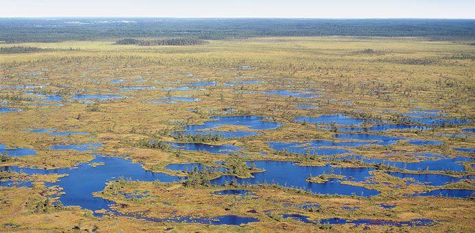 Kauhaneva-Pohjankangas National Park - Nationalparks.fi
