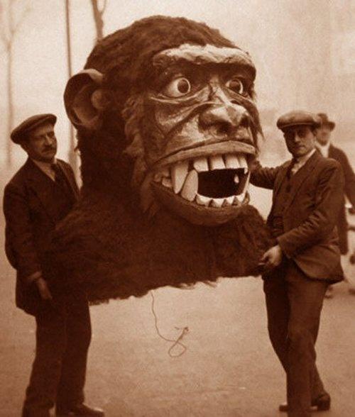 awesome monkey head