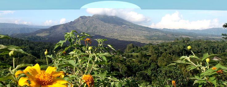 Bali Tour, Kintamani Tour, Bali Tours, Kintamani Organic Farm, Bali Guide | Kintamani Bali Tours