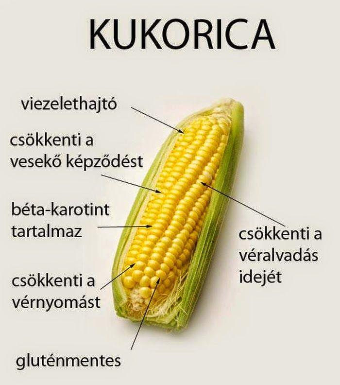 Kuponoldalak Közösségi oldala: Kukorica