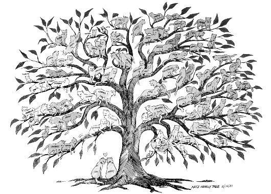 What a fun idea!  Family tree with family represented by ...cats! #customfamilytreeart #familytreepainting