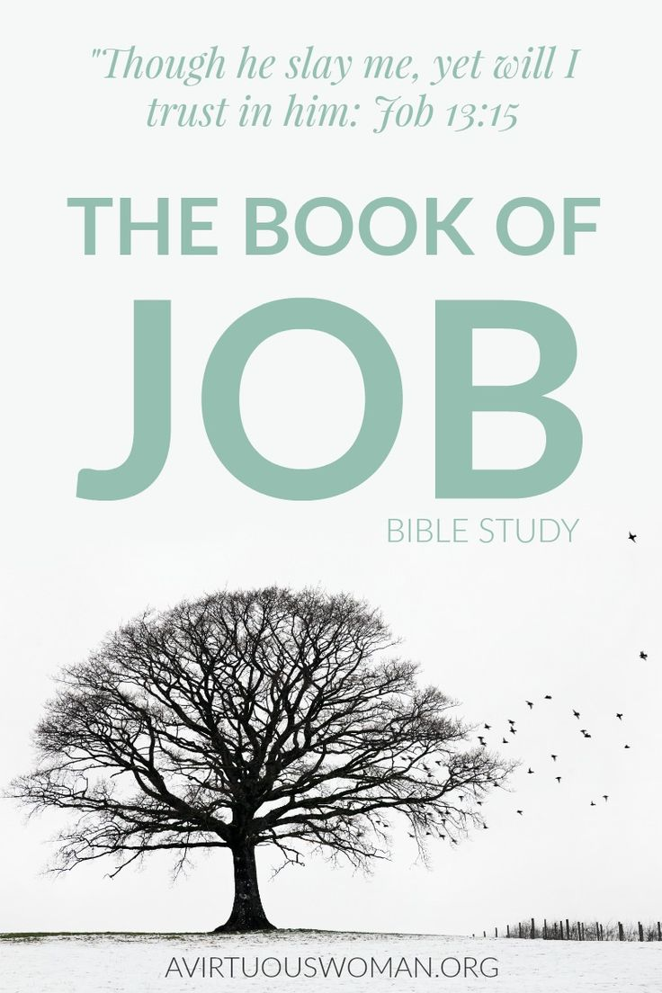 The Book of Job Bible Study @ AVirtuousWoman.org