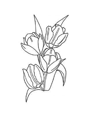 ausmalbild tulpen zum ausdrucken und ausmalen. #