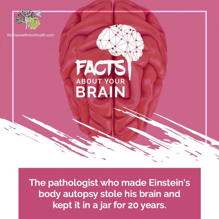 What's so special about Einstein's brain?
