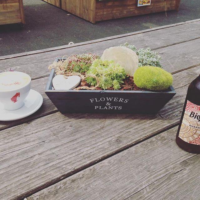 Hofladen vom Gut Clarenhof Ihr wollt gesund Einkaufen, vielleicht sogar selbst Erdbeeren 🍓 und Blumen 💐 pflücken und das Ganze mit ner netten #Kaffeepause verbinden? Dann ab zum #Hoflafen des #GutClarenhof in #Frechen.  Die #Biozisch #Cola mit Guarana ist äußert lecker, der #Kaffee allerdings gewöhnungsbedürftig herb.  Im Hofladen selbst müsst ihr unbedingt ne Flasche Erdbeersecco mitnehmen (Preis 5,50€, aktuell reduziert auf 4,50€). 🍓🍾😍 #Bio #JuliusMeinl #ohnekaffeeohnemich #kölntipp…