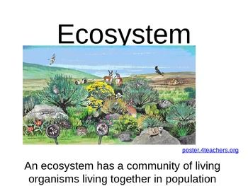 It has terrestrial and aquatic ecosystems and food webs integrated into one PowerPoint.
