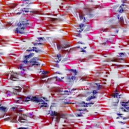 Color Stripes - ESTP_DIANA_0047