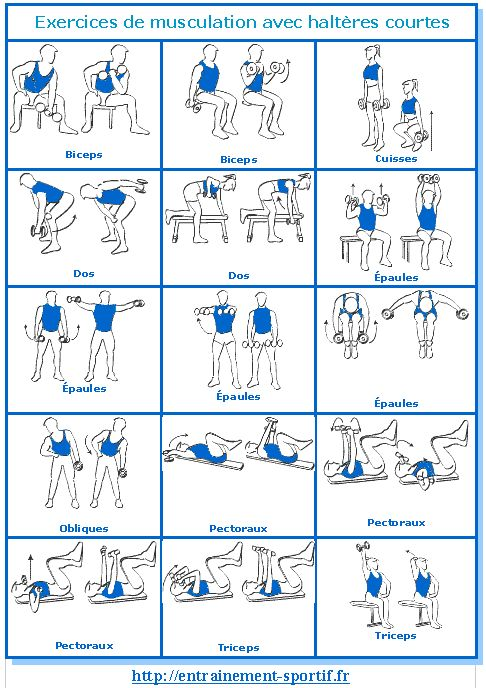Musculation avec #haltères: 15 exercices 1 programme 1 carnet http://entrainement-sportif.fr/exercices-musculation-halteres.htm