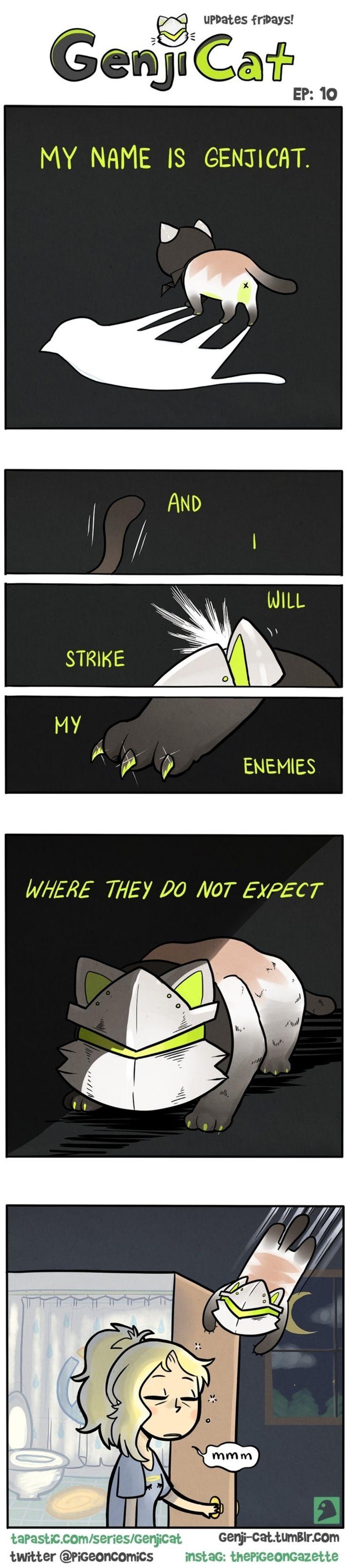 Genji cat, nooOO