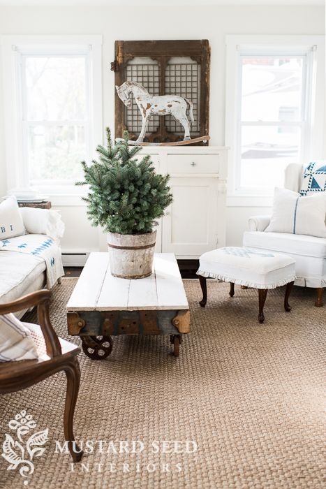 Blue spruce in a bucket on industrial cart coffee table