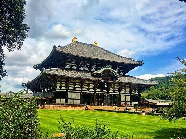 Japan Nara, Todaiji Temple  #Japan #Nara #Todaiji #Temple #todaijitemple #Nikon #d #5100 #d5100 #dlsr #camera # deer #2016 #holiday #travel #traveler #globe #backpacking #likeforlike #like4like #comment4comment #smile #beautiful