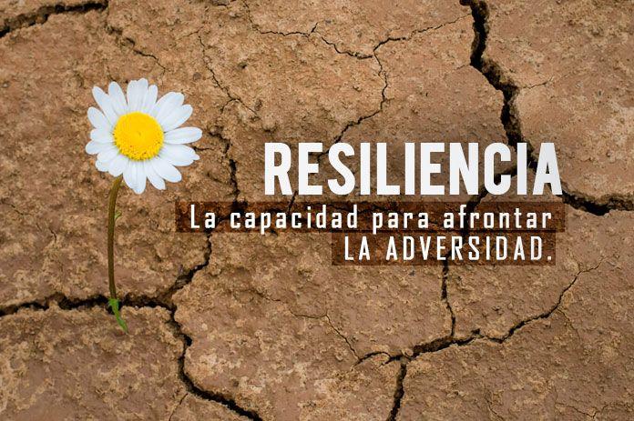 La resiliencia, una capacidad importantísima a cultivar