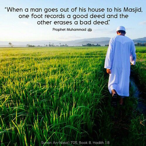 SAYINGS OF RASOOL ALLAH SAW