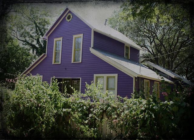Purple House by Calsidyrose, via Flickr....barn conversion house, New Braunfels, TexasPurple House, Texas Hillcountry, Barns Ology, Purple Barns, Ate Dreams, Purple Exterior, Barns Cottages, Barns Converse, House Group
