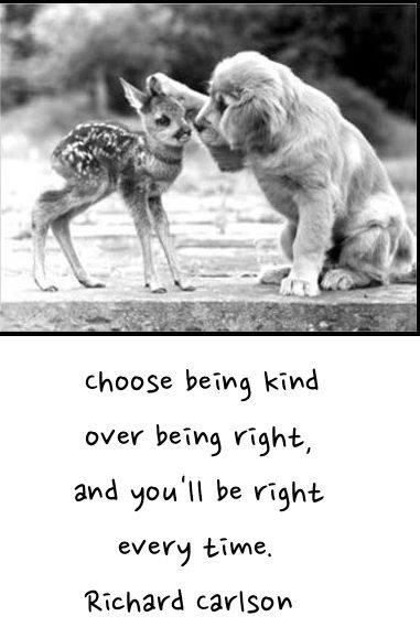 """Choose being kind over being right..."" Richard Carlson [381x579]"