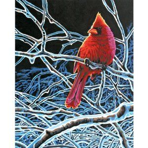 Dimensions 11-Inch by 14-Inch Paint by Number Kit, Ice Cardinal by Dimensions. $14.33. Ice cardinal paint by number kit. Printed board size is 11-inch by 14-inch. Kit includes pre printed textured art board, high quality acrylic paints, a paint brush, and easy to follow instructions. Color mixing achieves the subtle tones that make their designs look so realistic. Frames and mats are not included. The aptly named paint-by-number design, Ice Cardinal, features a brilliant...