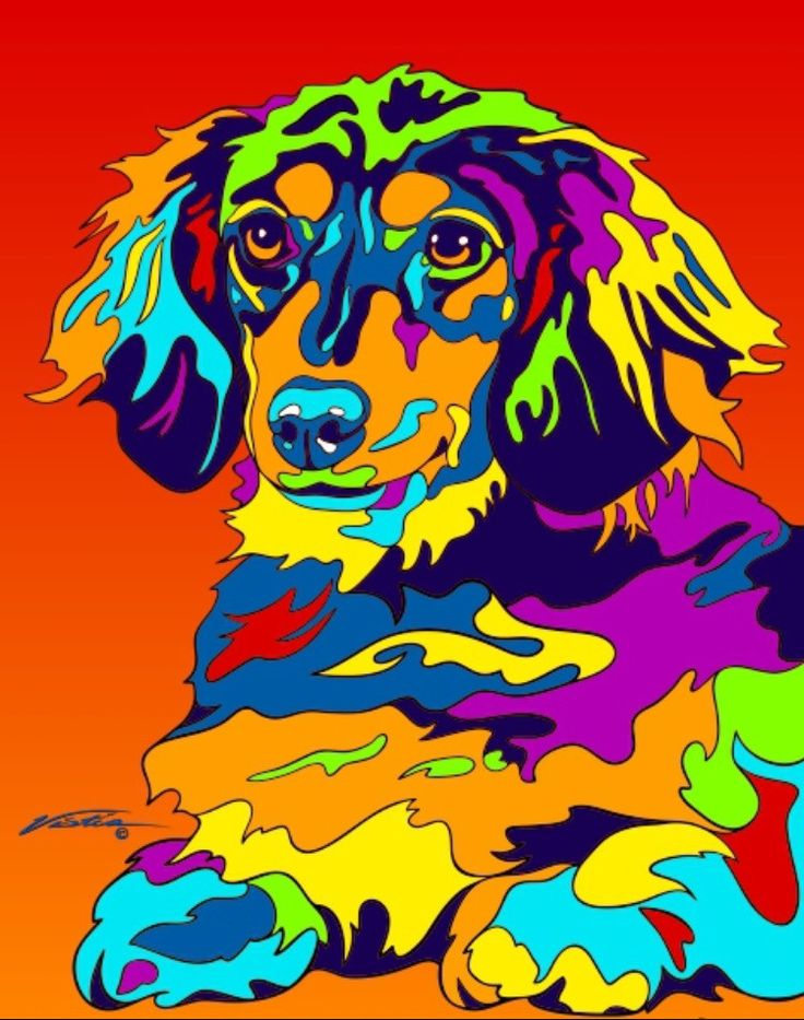 Multi-Color Long Haired Dachshund Matted Prints & Canvas Giclées. Hand painted and printed in USA by the artist Michael Vistia. Dog Breed: The dachshund is a short-legged, long-bodied, hound-type dog