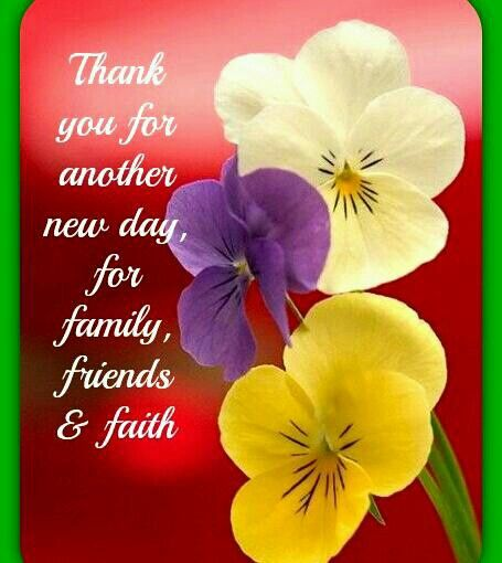 Thankful For A New Day Quotes: 124 Best Images About Thank You God! Thank You Lord! On