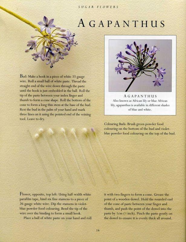 sugar flowers - 117863065412890194828 - Picasa Web Albums