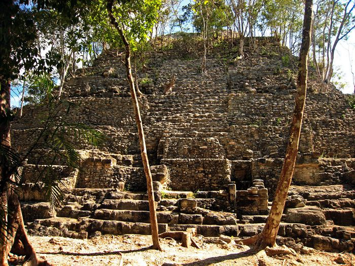 mirador_danta El Mirador has been only partly mapped, but the scale of its central public architecture is vast beyond anything undertaken by Hasaw- Cha'an-K'awiil of Tikal or his son Yax'kin Cha'an K'awiil, or any other contemporaries anywhere, during the Classic apogee of Maya civilization.