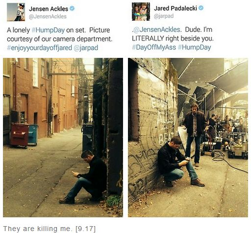 Jensen's lonely Humpday tweet and Jared's response - Supernatural behind the scenes