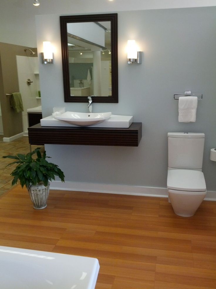 pictures of modern handicap bathrooms | For the handicap bathroom, this easy loading side dropping unit is ...