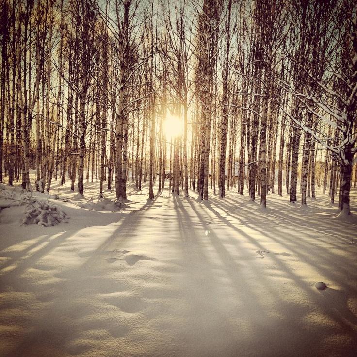 winter glitter