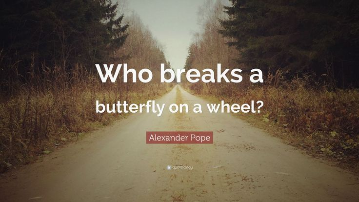 "Alexander Pope Quote: ""Who breaks a butterfly on a wheel?"""
