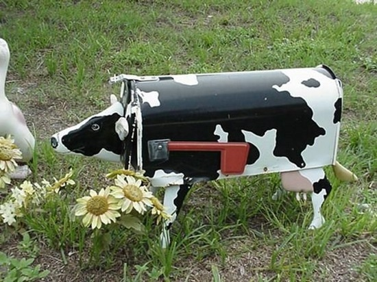 cow mail box