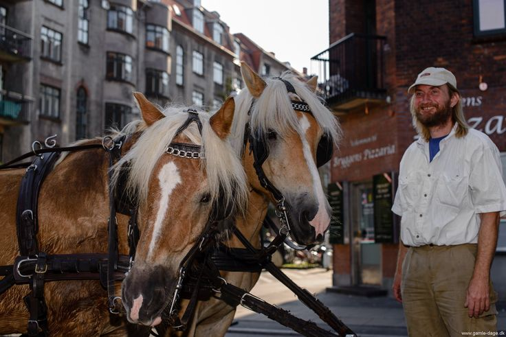 Endnu et år er lagt til Islands brygges liv, og med 109 år er Bryggen ikke længere en vår unge. I denne weekend blev fødselsdagen fejret som i de foregående år, med at lukke Gunløgsgade af, så forretninger og andre interessenter kunne rykke ud i gaden med deres stader og boder. #Islandsbrygge #Bryggen #Fødselsdag