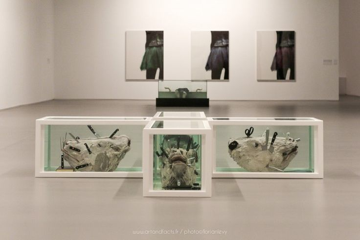 Damien Hirst et Louise A Lawler http://artandfacts.fr/art-lovers