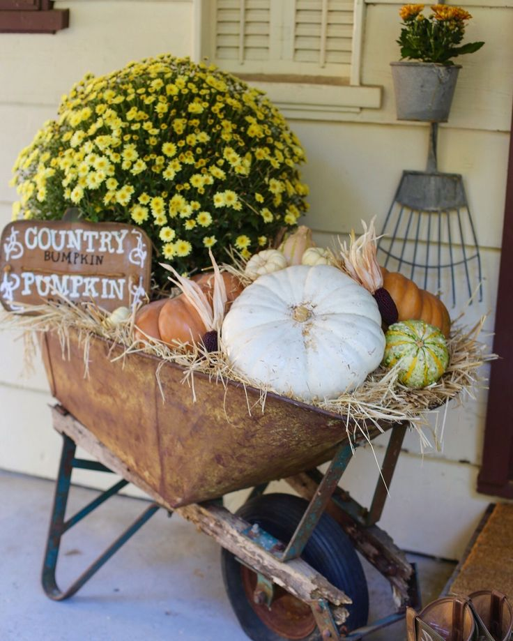Fall front porch. Recycled wheelbarrow. Fall wheelbarrow. Front porch Halloween and thanksgiving decor. Rustic porch.
