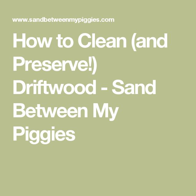 How to Clean (and Preserve!) Driftwood - Sand Between My Piggies