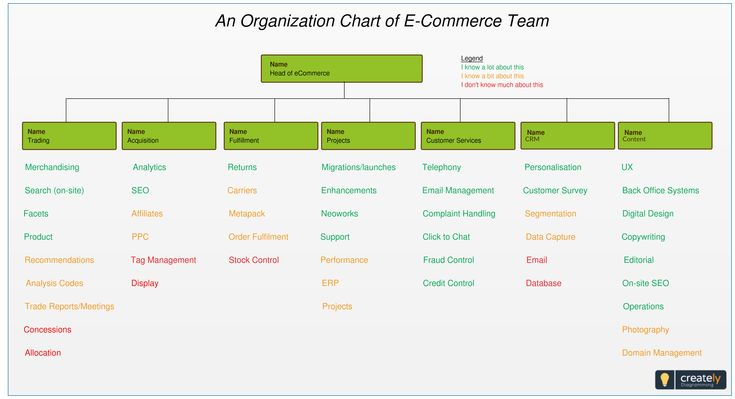 An Organization Chart of ECommerce Team in an online business anization This template shows