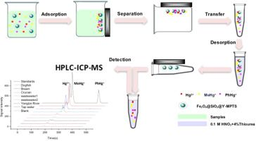 #Talanta Speciation of mercury in water and fish samples by HPLC-ICP-MS after magnetic solid phase extraction
