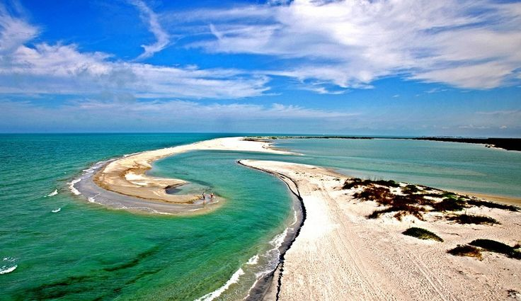 43 Best Images About Cayo Costa On Pinterest Trips Acre