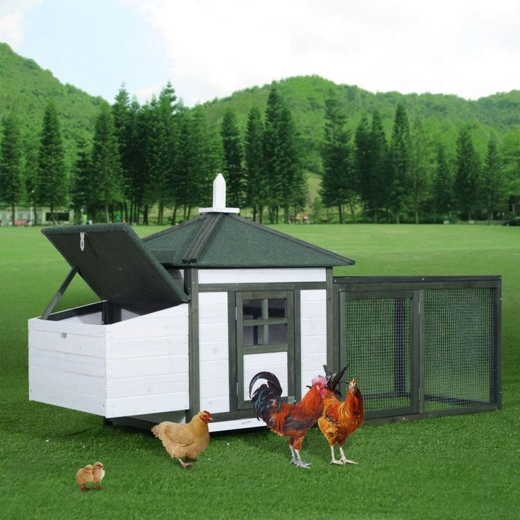 Lunarland Chicken Coop Deluxe Wooden House Poultry Hen Hutch Cage Run w/Nesting Box Our PawHut living area, nesting box, backyard run all in one chicken coop provide your chickens Read  more http://dogpoundspot.com/dog-luxury-store-555/  Visit http://dogpoundspot.com for more dog review products