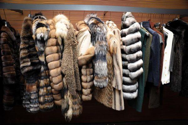 Fendi furs: Students Create, Fur Fur, Fendi Fur, Fashion Fav, Self Portraits, Clothing, Fur Closet, Furry Bitch, Style Climax