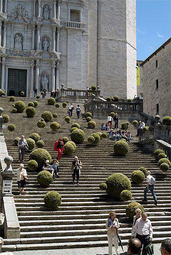 Girona Temps de Flors, 11870.com