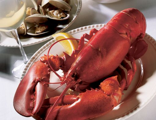 Maine...the way life s...