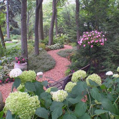 images about Woodland Landscape on Pinterest