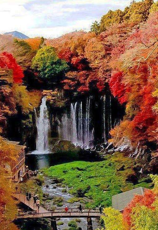 Fukuroda falls, Japan. Fukuroda Fallsare located in Ibaraki Prefecture in the town of Daigo , district Fukuroda has its source spring just above the falls. The river flows through the falls and ultimately joins a major Kuji river.