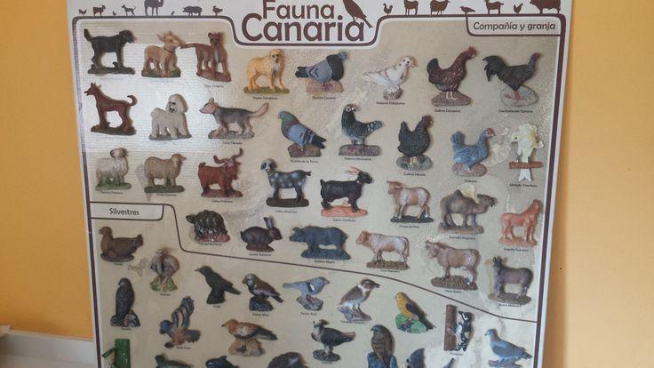 Colección de figuras de Fauna Canaria. Disponible en Ebay: http://www.ebay.es/itm/122057344605?ssPageName=STRK:MESELX:IT&_trksid=p3984.m1555.l2649