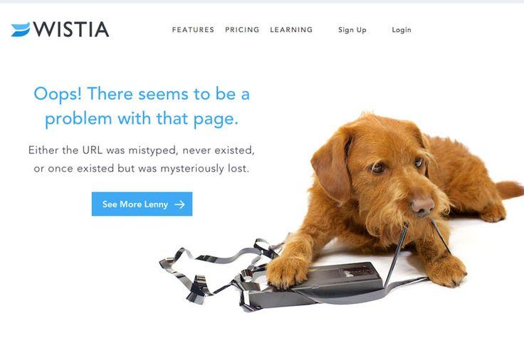 Wistia - 404 Page - With Dog