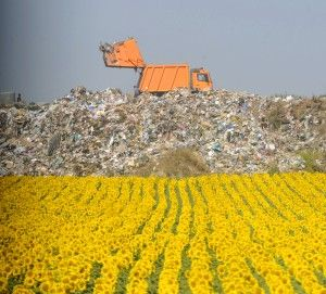 Municipal Solid Waste in the United States