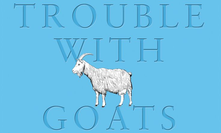 The Pool | Arts & Culture - Joanna Cannon The Trouble With Goats And Sheep