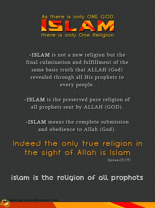 true islam religion Therefore all other religions must do likewise' or: 'if i say terrorism and  beheading are not attributes of true islam, i may persuade the terrorists.